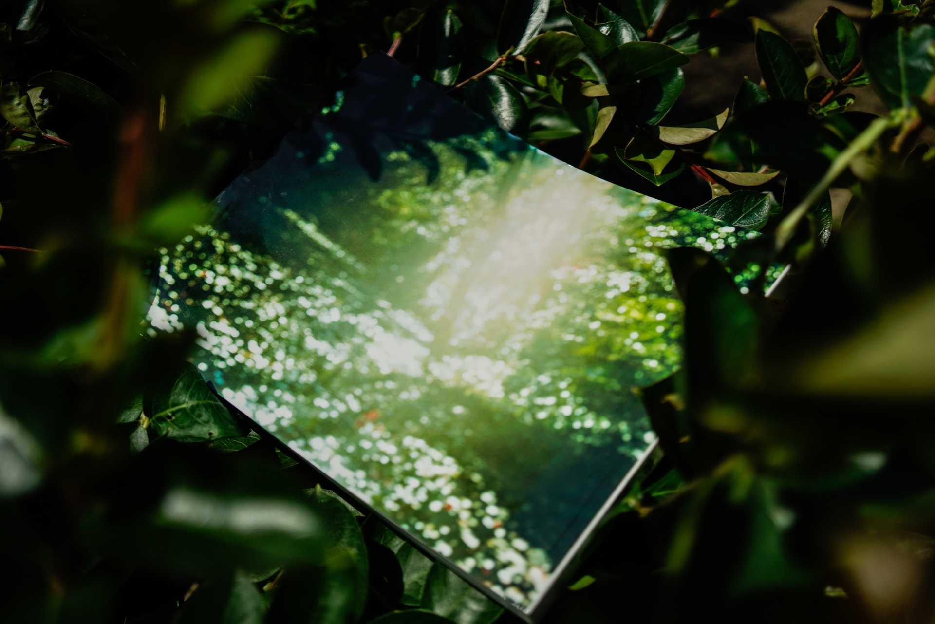 写真集「感動」